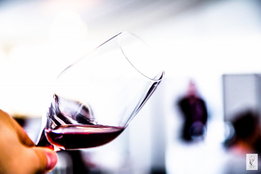 Rencontres vinicoles lyon 2016