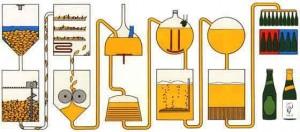 Brassage de bière, la cuvée de l'ASNCAP