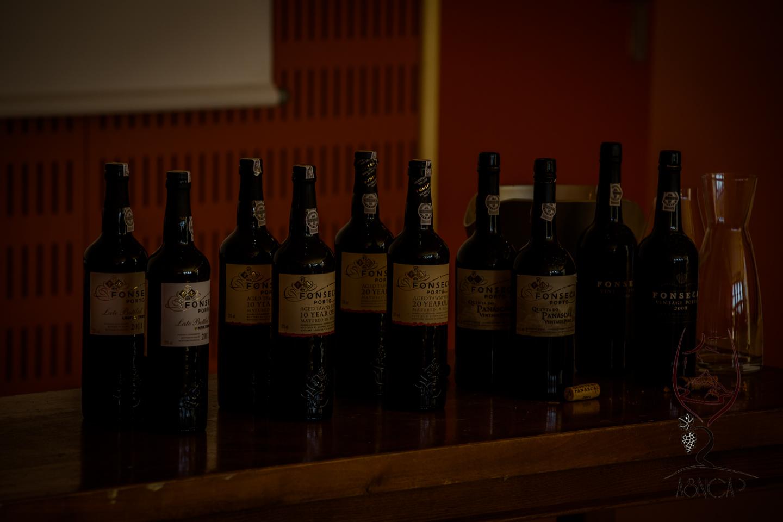 Rencontres vinicoles cannes 2016